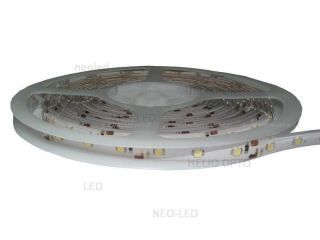 NEOLED LED páska 5m  4,8W/1m diody SMD 3528 IP63 60led/1m