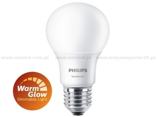Philips Scene Switch 9.5-60W A60 E27 WW-CW FR ND 1BC/4 827/840 2700K/4000K 806lm